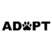Adopt a Pet Die Cut Vinyl Decal PV521