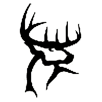 Buck Die Cut Vinyl Decal PV879