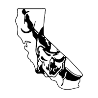 CA Raiders Die Cut Vinyl Decal PV319