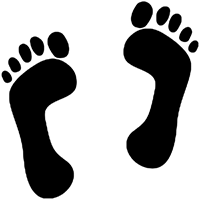 Feet Die Cut Vinyl Decal PV674