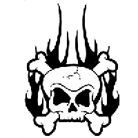 Flaming Skull Die Cut Vinyl Decal PV1037