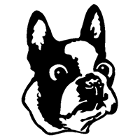 French Bull Dog Die Cut Vinyl Decal PV599