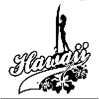 Hawaii Die Cut Vinyl Decal PV540