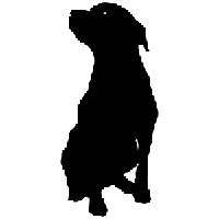 Labrador Retriever Die Cut Vinyl Decal PV1075