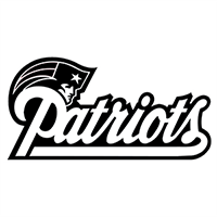 NFL Patriots Die Cut Vinyl Decal pv1827