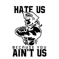 NFL Patriots Hate US Aint US Die Cut Vinyl Decal PV1363