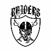Raiders Skull NFL Die Cut Vinyl Decal PV868