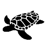 Sea Turtle Die Cut Vinyl Decal PV685