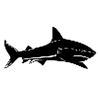 Shark Die Cut Vinyl Decal PV552