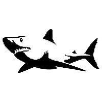 Shark Die Cut Vinyl Decal PV693