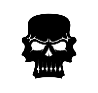 Skull Die Cut Vinyl Decal PV527