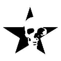 Star Skull Die Cut Vinyl Decal PV1170