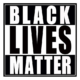 Black Lives Matter Die Cut Vinyl Decal pv3010